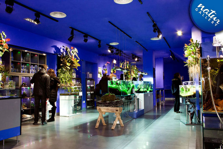 Botiga Natur Gallery de Barcelona